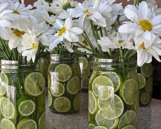 centros mesa citricos