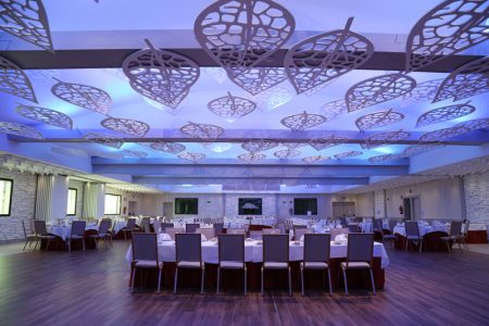 salon para bodas en Albacete Meson El Lomo